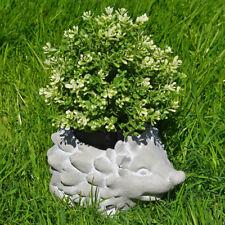 Hedgehog Garden FIORIERA VASO IN CEMENTO EFFETTO BRILLANTE accessorio per esterni 80285