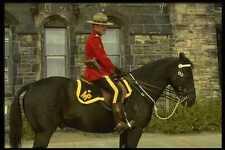 197083 RCMP Officer On Horseback A4 Photo Print