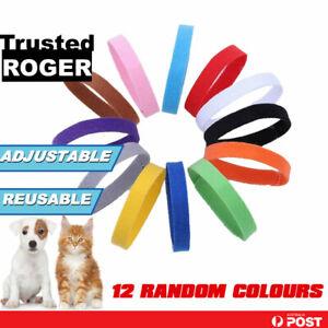 12x Whelping ID Collar Bands Pet Puppy Dog Kitten Identification Collar Tags AU
