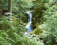 Fototapete WATERFALL IN SPRING 366x254 Wald Wasserfall Bach Fluss Wasser Forest