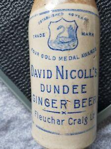 Dundee david nicolls ginger beer bottle swing stopper nr