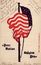 pre-1907 - Your Nation Salutes You - waving U.S. Flag 1907 cpyrt R L Wells