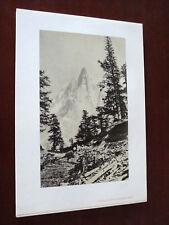 STAMPA RIPRODUCENTE FOTO DEL 1860 (N° 7)