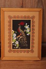 "Vintage Mid Century Modern Picture Colorful Bird Made of Feathers Framed 9""x11"""