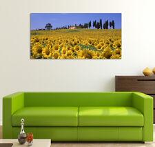 Quadro moderno Stampa su Tela Cotone cm.120x60 Girasoli Paesaggio 1 Arredo Casa