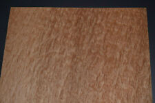 Eucalyptus Burl Raw Wood Veneer Sheet 11 X 27 Inches 142nd Thick 2225
