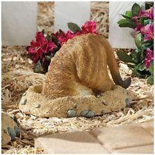 Meerkat Into Hole Garden Sculpture Statue Flowerbed Outdoor Decor