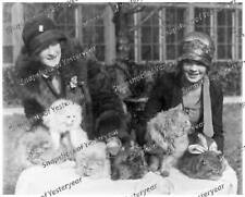 Vintage photo-1920s-Women at Cat Show-Furs-Hats-8x10 in