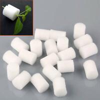 CF2B 10pcs Hydroponics Sponge Soilless Hydroponic Mesh Net Pots Mini
