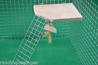 Shelf with Ladder & Dangler Toy Furniture Hamster Gerbil Rat Degu Cage