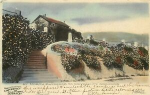 c1907 Hand-Colored Postcard; North Entrance to University Grounds Cal Berkeley