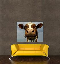 POSTER PRINT GIANT PHOTO NATURE ANIMAL FUNNY COW FARM CLOSE UP HEAD FACE PAMP196