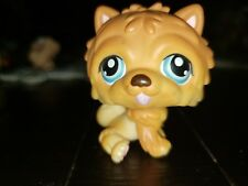 Littlest Pet Shop # 117 Brown Chow Chow Dog With Blue Eyes