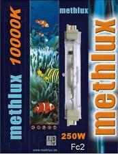 HIT HQI Brenner 250W 10.000K Aquarium Licht 10K Fc2