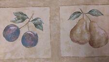 Cherry/Pear/Blueberry- Wallpaper Border, 5 yd pkg,  BT77066B (R-2A)