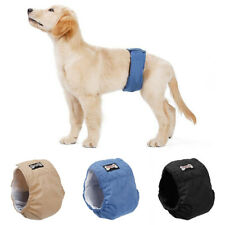 Retriever Diaper Shorts Underwear Hygiene Pant Physiological Pant Pet Male Dog