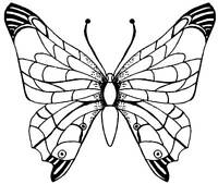 Unmounted Rubber Stamps - Set of 2 Butterflies Butterfly - 6040