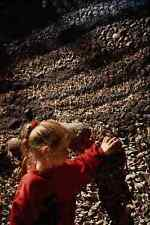 609000 The Strata Of An Archaeological Dig Tsimshian Prehistory A4 Photo Print