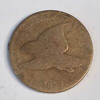 1858  Flying Eagle Cent - SL or LL ?? -  Circulated - High Quality Scans #C541