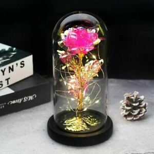 Rose In LED Glass Valentine's Day Mother's Day Special Romantic Gift Decorative