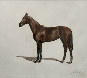 """Original Coloured Lithograph by Jean-Marie Rivet (France) """"The Horse"""""""