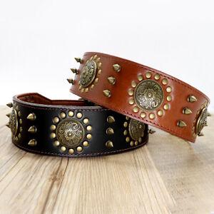 Best Genuine Leather Spiked Studded Dog Collars for Large Breeds Doberman Boxer