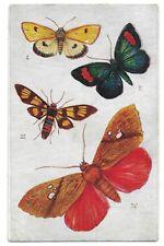 "RAPHAEL TUCK ""AQUARETTE"" BUTTERFLIES AND MOTHS SERIES POSTCARD #9219,CIRCA 1907"