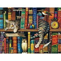 Katze auf Bücherregal Design Puzzle 1000 Stück für Erwachsene DIY Puzzles E1G9