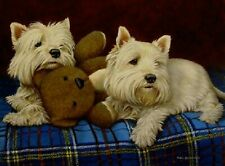 More details for white west highland terrier