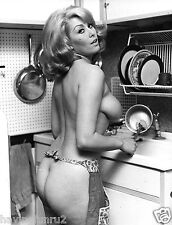 1950s Teri Martine In the Kitchen Apron Clad Nude  Pinup  8 x 10  Photograph