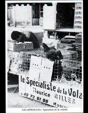 LES HEROLLES prés de MONTMORILLON (86) STAND MARCHAND FOIRE à la VOLAILLE en1988