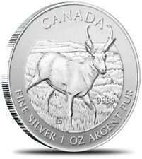 2013 Canada Wildlife Series Pronghorn Antelope 1 oz .9999 Silver Coin in capsule