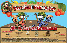 250 Million Live Beneficial Nematodes Hb & Sf -Kills Over 200 Different Species