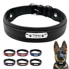 Thick Padded Leather Dog Collar Personalized Nameplate Large Dog Training Collar