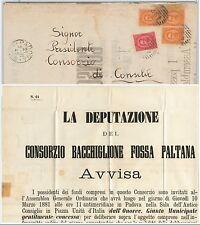 ITALIA REGNO storia postale 1881 MANIFESTO di PADOVA: Bacchiglione Fossa Paltana