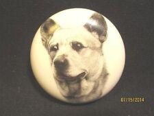 Porcelain Australian Cattle Dog Head Study Paperweight