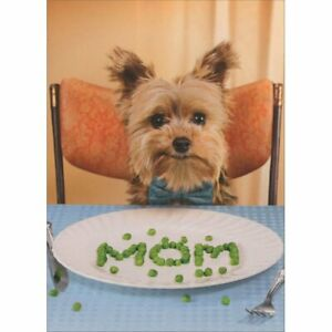 Avanti Press Dog Spells Mom With Peas Funny / Humorous Mother's Day Card
