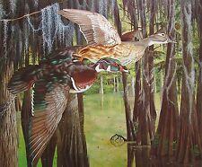 Woodies by John Akers Wood Ducks
