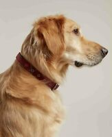 Joules Genuine Leather Heritage Tweed Dog Collars & Leads - Choose S M L XL