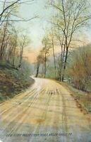 VALLEY FORGE PA – Valley Creek Road View Rotograph Postcard - 1908