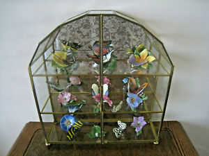 """Brass Glass Curio Display Case 13"""" Tall With Lot of 8 Butterflies of the World"""