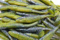 """5"""" Sunfish Paddle Tail Swimbaits Soft Plastic Bass Fishing Lure"""