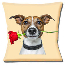 """Jack Russell Dog 16""""x16"""" 40cm Cushion Cover Tan White Dog Red Rose in Mouth"""