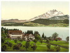 The Polytechnic Chalet Seeburg Lucerne A4 Photo Print