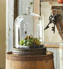 Rustic Terrarium Bell Dome Glass Cloche Display, Distressed Wood Base Metal Band