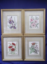 HAND COLOURED PRINTS FRAMED IRIS, ROSE, POPPY, BUTTERFLY - PISCES ARTLINES '78