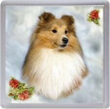 Shetland Sheepdog / Sheltie Coaster No 2 by Starprint