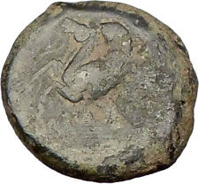 Syracuse Sicily 344BC Timoleon  HIPPOCAMP Sea horse  Ancient Greek Coin  i15542