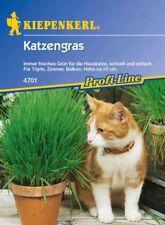 Kiepenkerl - Katzengras 4701 f. Topf Balkon Höhe 10cm frisches Gras f. Hauskatze