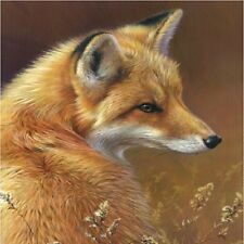 Red Fox Image 1 Coasters Set Of 4 Rubber Backed